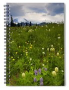 Meadow Beneath The Storm Spiral Notebook
