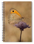 Meadow Brown Butterfly Spiral Notebook