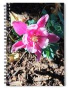 Meadow Columbine Spiral Notebook