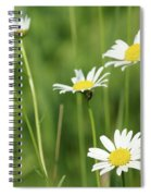 Meadow Detail White Wild Flowers Spiral Notebook