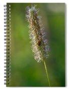 Meadow Foxtail Spiral Notebook