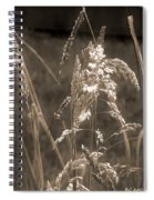 Meadow Grass In Sepia Spiral Notebook