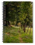 Meadow Grass Path Spiral Notebook