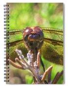 Meadow Hawk Dragonfly 2 Spiral Notebook