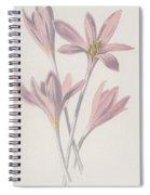 Meadow Saffron Spiral Notebook