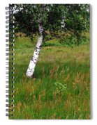Meadow With Birch Trees Spiral Notebook