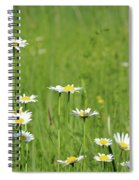 Meadow With White Wild Flowers Spring Scene Spiral Notebook