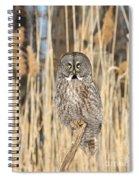 Meadowland Deity  Spiral Notebook