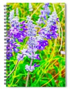 Mealy Blue Sage Spiral Notebook