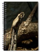 Mean Poisonous Snake Spiral Notebook