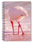 Meandering Beauty Cortez Beach Spiral Notebook