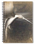 Mechanical Hummingbird Spiral Notebook