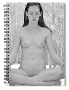 Meditation In The Snow Spiral Notebook