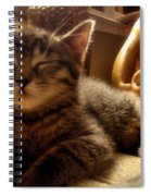 Meditative Pose Spiral Notebook