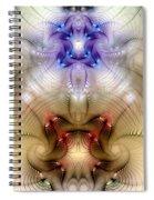 Meditative Symmetry 3 Spiral Notebook