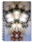 Meditative Symmetry 4 Spiral Notebook