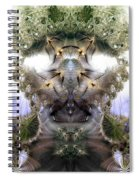 Meditative Symmetry 5 Spiral Notebook