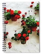 Mediterranean Flower Spiral Notebook