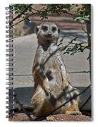 Meerkat 2 Spiral Notebook