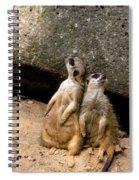 Meerkats Keeping An Eye Out Part 2 Spiral Notebook