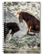 Meeting On The River  Spiral Notebook
