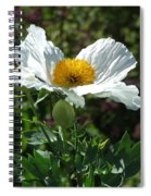 Mega-poppy Spiral Notebook
