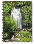 Meigs Falls 1 B Spiral Notebook