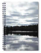 Melancholy Reflections Spiral Notebook