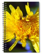 Mello Yello Spiral Notebook
