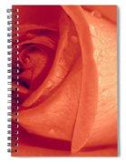 Mellow Spiral Notebook