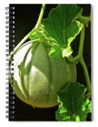 Mellow Mellon Spiral Notebook