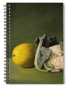 Melon Cauli Spiral Notebook