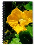 Melon's Flower 12 Spiral Notebook