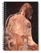 Melted Wax Model Spiral Notebook