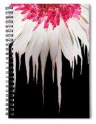 Melting Petals Spiral Notebook