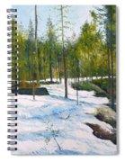 Melting Snow At Umea Norrbotten Sweden 2002   Spiral Notebook