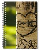 Memories In The Aspen Tree Spiral Notebook
