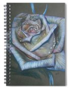 Memory Expressed Spiral Notebook