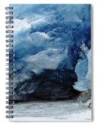Mendenhall Glacier Face Spiral Notebook