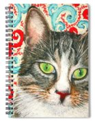 Meow Please... Spiral Notebook