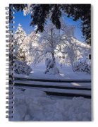 Merry Christmas And A Happy New Year Spiral Notebook