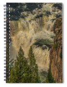 Mesa Falls In Summer Spiral Notebook