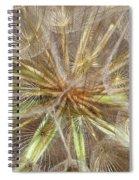 Mesmerizing Salsify Macro Spiral Notebook