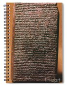 Mesopotamian Cuneiform Spiral Notebook