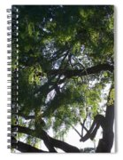 Mesquite Tangle Spiral Notebook