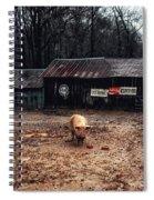 Messy Pig Farm Lot Spiral Notebook