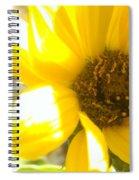 Metallic Green Bee In A Sunflower Spiral Notebook