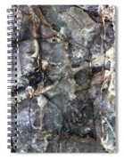 Metamorphosis  Male Spiral Notebook