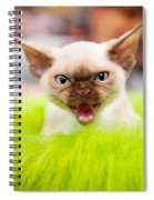 Mew Kitty Funny Mad Face Spiral Notebook