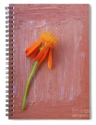 Mexican Flame Spiral Notebook